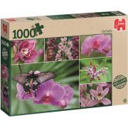 Holland Orchids Legpuzzel 1000 Stukjes