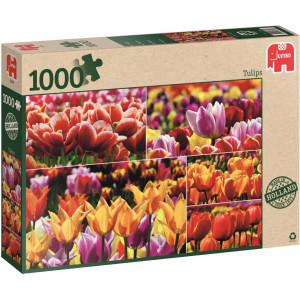 Hollandse Tulpen - Puzzel 1000 stukjes